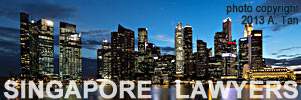 Nite skyline of Singapore - caption SINGAPORE LAWYERS